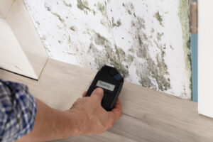 Mold Certification Online to Test Mold
